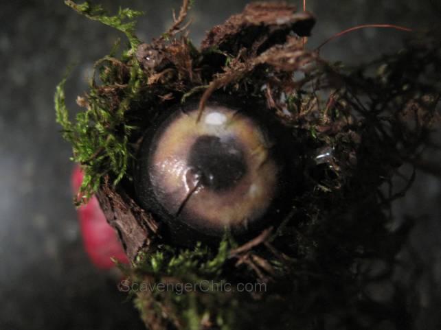 Raven Eye Apothecary Jar diy