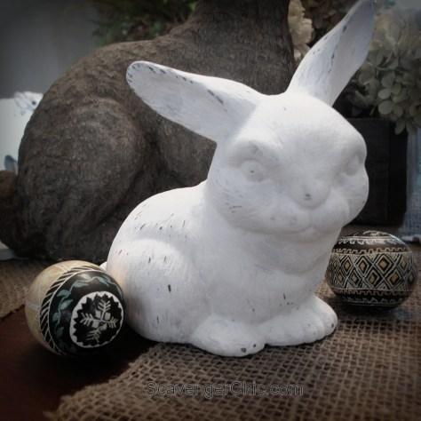 Bunny Makeover