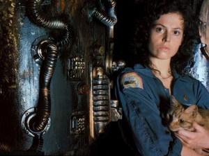 Alien_Ripley_Cat_Screen