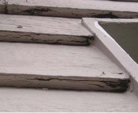 The bottom edge of LP lap siding is where the failure is first evident.