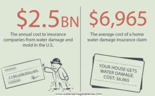 The costs are just a staggering as the frequency. Water damage and mold cost the insurance industry $2.5 billion dollars per year, and the average cost of a home water damage insurance claim is $6,965.
