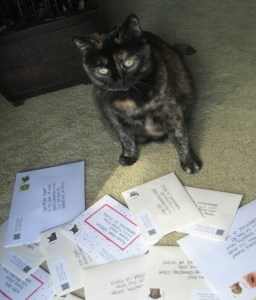 Fudge reviews my thank you notes before I pop them in the mail.