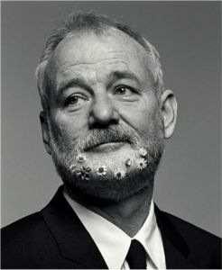 Bill-Murray-New-York-Times