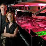 CU-Boulder physics professors and JILA fellows Henry Kapteyn and Margaret Murnane stand next to one of their laser devices.