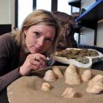 Egg study supports link between birds and dinosaurs