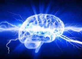 1708480461_brain storm web_3969_446x324