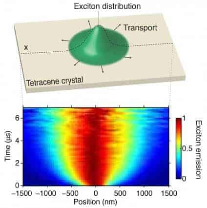 Excitons observed in action for the first time