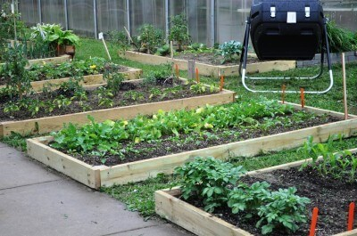 What are the physical and mental benefits of gardening?