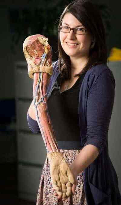 3D printed anatomy to mark a new era for medical training