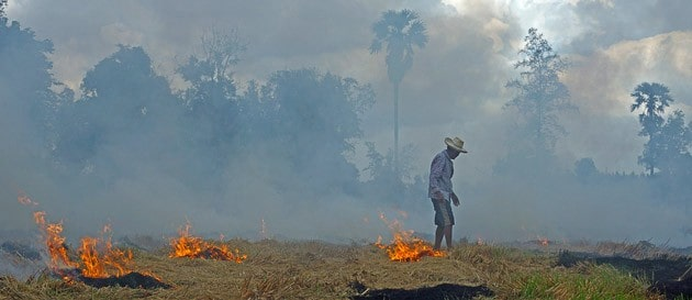 Stanford study shows effects of biomass burning on climate, health
