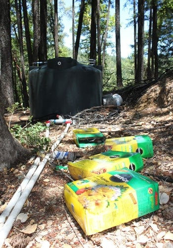 Environment takes big hit from water-intensive marijuana cultivation