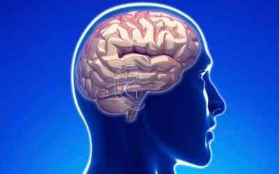 Teen brains facilitate recovery from traumatic memories