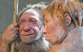 Human culture, not smarts, may have overwhelmed Neanderthals