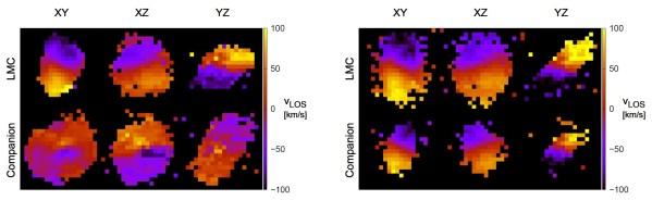 Rotation der Sterne (links) und des Gases (rechts) in der LMC (oben) und der verschluckten Galaxie (unten). Die Farbe stellt die Geschwindigkeit auf den Beobachter zu (blau) oder von ihm weg (rot) dar. Während die beiden Galaxien in allen Ebenen gegeneinander rotieren, rotiert das Gas der beiden im gleichen Drehsinn wie die LMC. Bild: [1].