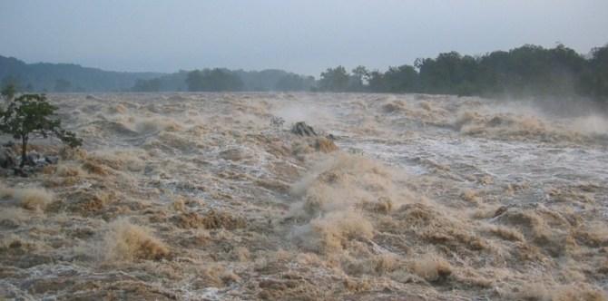 Soil erosion deforestation