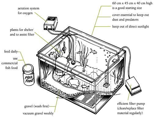 show a diagram of aquarium