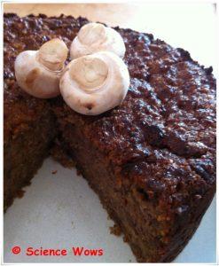 Mushroom Cake... very moist, very heavy and tasted of....mushrooms!