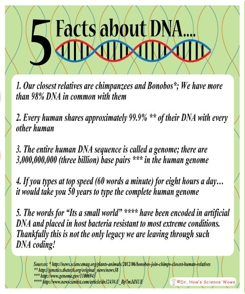 5 Facts about DNA