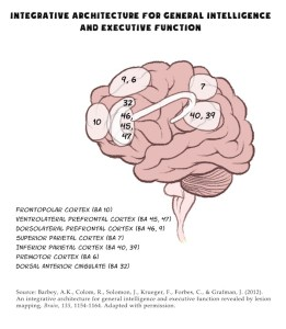 Integrative-Architecture-for-General-Intelligence-and-Executive-Function