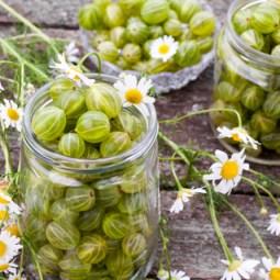 Gooseberries Glass Storage Jars