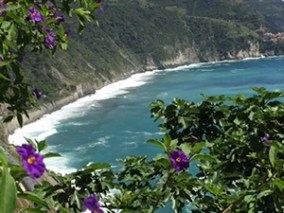 CT_Corniglia_view_of_ocean_from_steps_with_purple_flowers