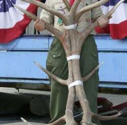 Boy Scout Image - Antlers