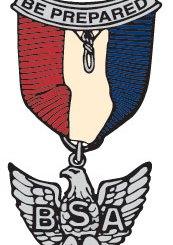 Boy Scout Image -- BSA Eagle Award