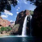 Boy Scout Image -- Grand Canyon