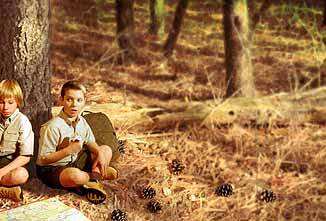 Boy Scout Image -- Lost in the woods