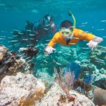 Boy Scout Image -- Snorkeling
