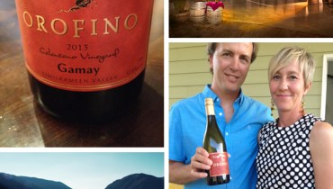 """MESSAGE IN A BOTTLE 