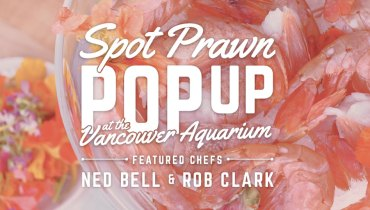 GOODS | Vancouver Aquarium's Pop-Up Cafe Set To Celebrate Spot Prawn Season, May 12
