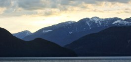 1,000 COOL THINGS ABOUT VANCOUVER | Coming Home After A Long Time Away From It