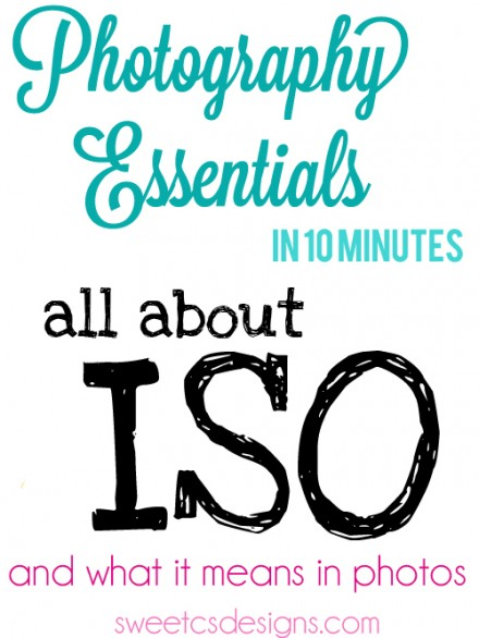 Photography Tutorial from Sweet CS Designs - All About ISO