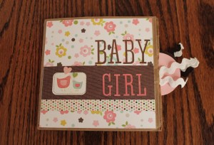 Baby Girl Mini Paper Bag Scrapbook by Scrappy Bags