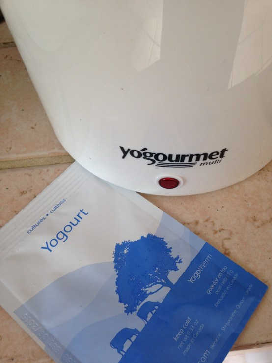 DIY Foods: Homemade Vanilla Yogurt from Scratch!