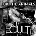 cult-for-the-animals