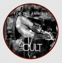 the-cult-animals