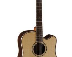 cort-guitar