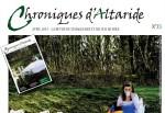 en Avril La Folie règne sur le n°23 des Chroniques d'Altaride
