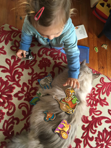 Stoli plays with Aria, 23 September 2016