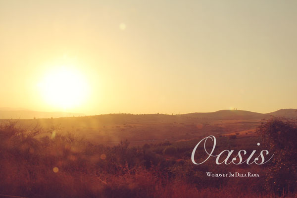 desert israel oasis photography travel inspiration