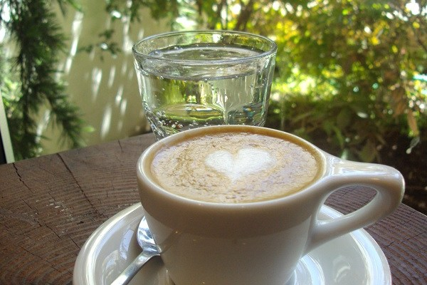 Burien Press Is An Outpost of Great Coffee