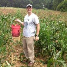 Harvesting Corn at First Fruits Farm