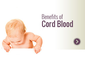 A Leader in Cord Blood and Tissue Banking