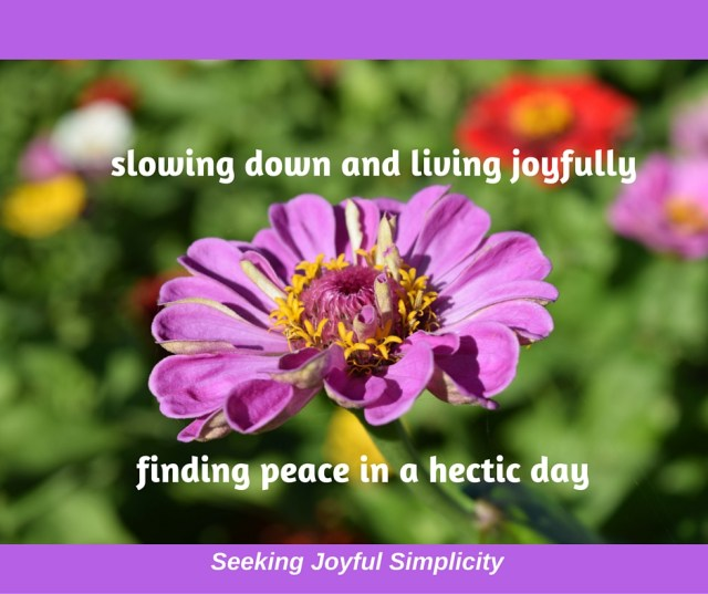 Simple Ways to Slow Down and Find Peace in a Hectic Day