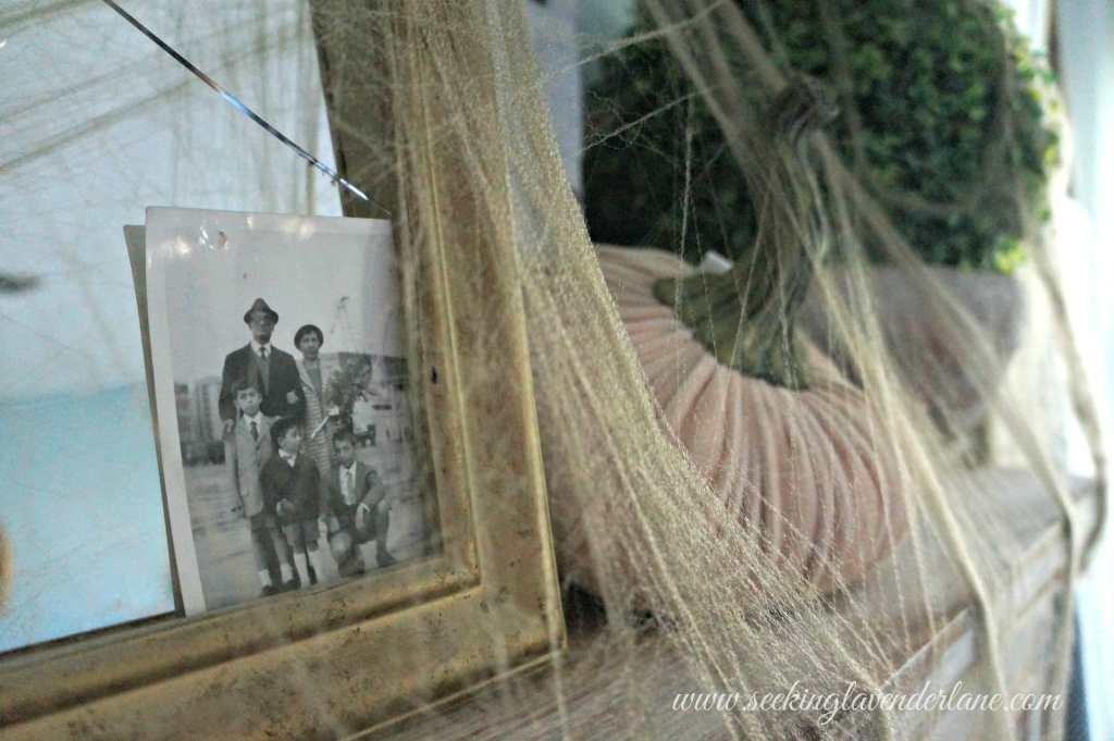 gold spider web decor