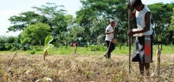 México: Aseguradora salva a campesinos de QRoo