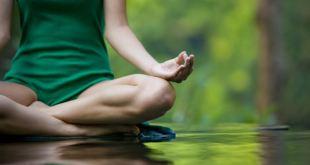 Cegahdan Obati Problem Punggung dengan Yoga