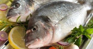hilangkan-cemas-dengan-makan-ikan